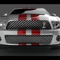 Backfordmustangjpg.8 cover