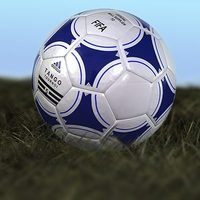 Adidas soccerball cover