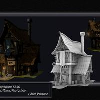 Tudor style house cover