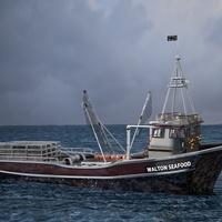 Crab trawler cover