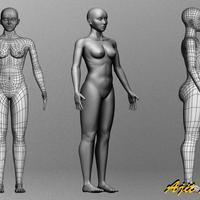 Female body cover