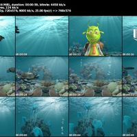 21 green tutle s cover