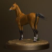 Horse ass render2 cover