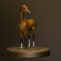 Horse front render cover