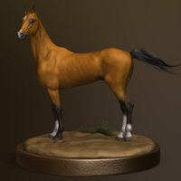 Horse full render1 cover