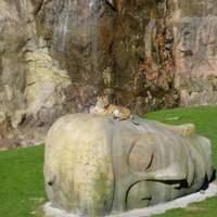Tigeronbuddha cover