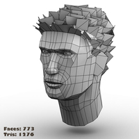 Face1 cover