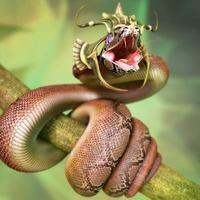 Snake cover