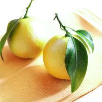 Lemons cover
