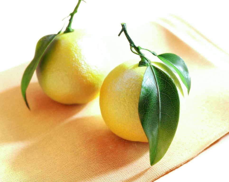 Lemons show