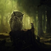 Owl background cover