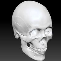 Skull34 cover