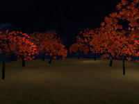 Free Maple Tree for Maya 1.0