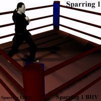 Free Sparring BHV motion File 0.0.0