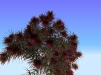 Free Protea for Maya 0.1