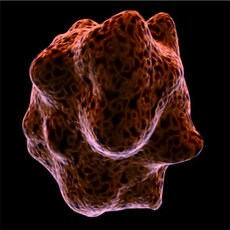 macrophageCell for Maya 1.0