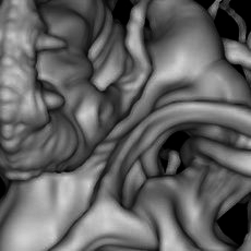 Ambient Occlusion Material for Zbrush 1.0.0