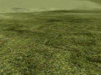 Photoreal_Shader_Grass 7.0.0 for Maya