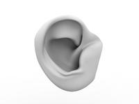 Free ear 3D Model