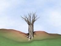 Withered Tree 3D Model