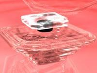 Trezor Parfume 3D Model