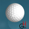 23 31 03 64 golf1 4