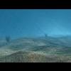 23 32 57 425 underwater 4