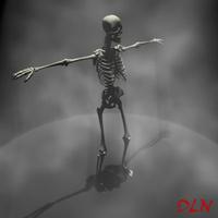 Skull, skeleton 3D Model