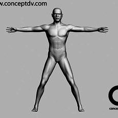 Male Human Figure  3D Model