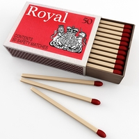 Matches 3D Model