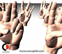 3D Hand Gestures 3D Model