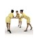 aXYZ design - BWom0010-St / 3D Human for superior visualizations 3D Model