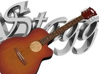 Stagg Guitar 3D Model