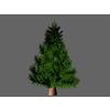23 57 38 794 pinetreesmall 4