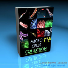 Micro cells models collection 3D Model