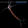 00 01 58 591 neurone12 4