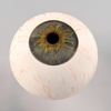 00 02 40 981 eyeball0000 4