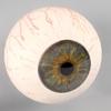 00 02 41 123 eyeball0002 4