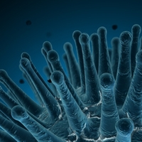 Blue Spore 3D Model