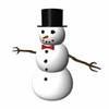 00 05 39 35 snowman 4