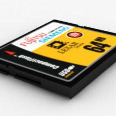 FSC Data Storage Card 1 3D Model
