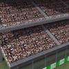 00 17 48 390 racetrack cam10 4
