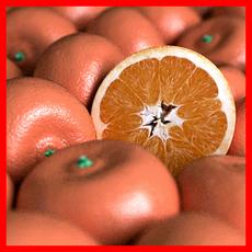 Orange - Tangerine 3D Model