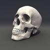 00 23 04 132 skull rot 02 4