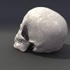 00 23 04 200 skull rot 04 4