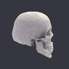 00 23 04 23 skull left 4