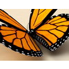 00 25 28 950 monarch 1 4