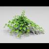 00 28 14 529 plant6 4