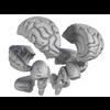 00 34 55 711 brain07 4