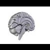 00 34 56 460 brain15 4